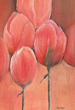 Tulips by Linda Clark
