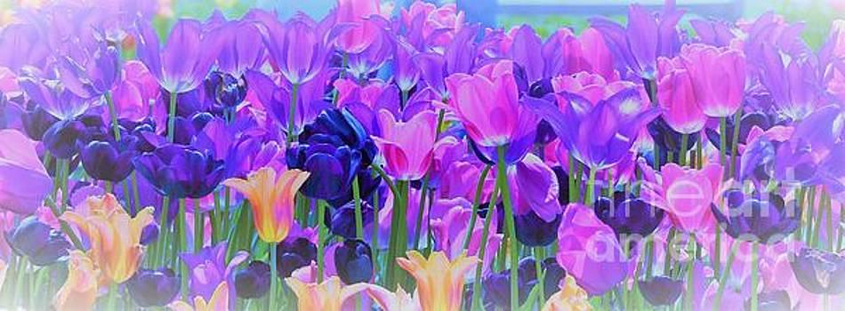 Tulips lll  by Wanda J King