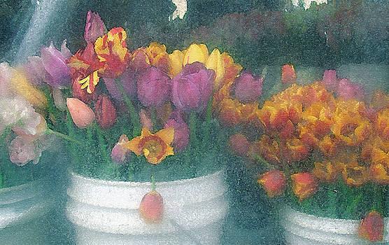 Lydia L Kramer - Tulips