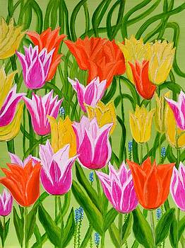 Tulips by Magdalena Frohnsdorff
