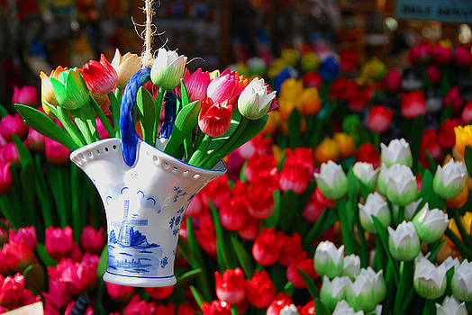 Tulips n' Amsterdam by Josephine Benevento-Johnston