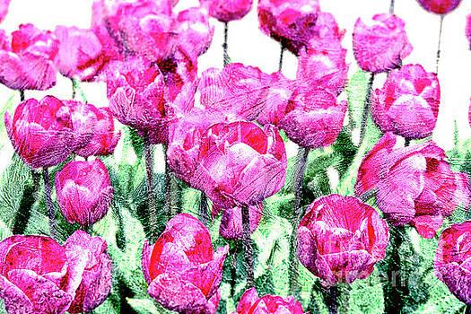 Patricia Hofmeester - Tulips
