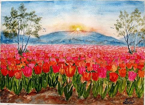 Tulips by Shashikanta Parida