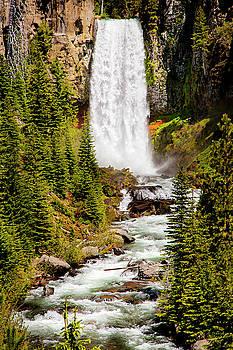 Tumalo Falls Oregon by David Millenheft