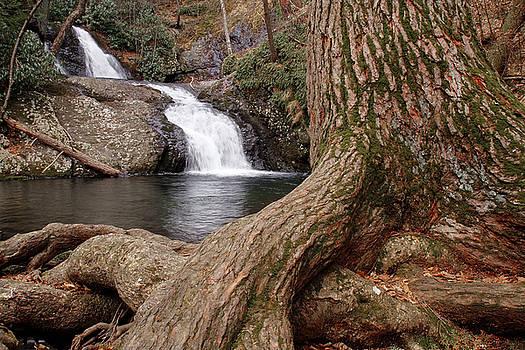Dawn J Benko - Tumbling Waters