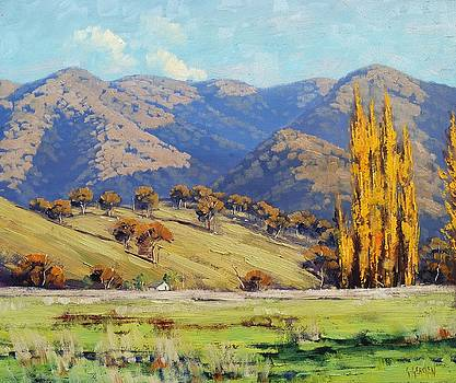 Tumut Autumn Landscape by Graham Gercken