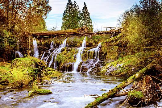 Tumwater Falls Park by Barry Jones
