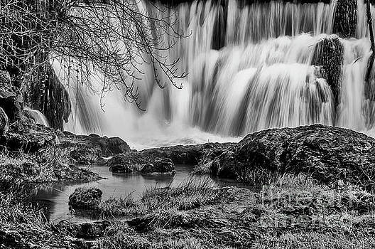 Tumwater Falls Park by Sal Ahmed