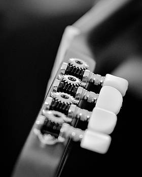 Tuning pegs by J Austin
