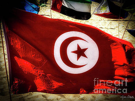 Julian Starks - Tunisia Flag