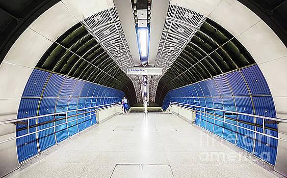 Svetlana Sewell - Tunnel Entrance