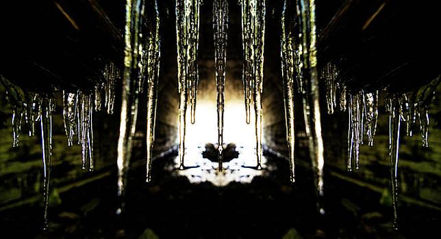 Pelo Blanco Photo - Tunnel Icicles Reflection