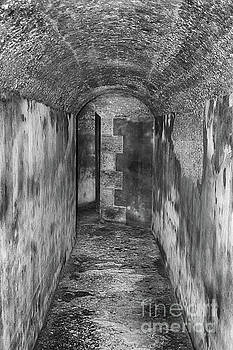 Tunnel by Tom Gari Gallery-Three-Photography