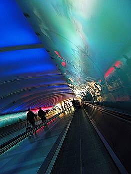 Elizabeth Hoskinson - Tunnel Vision