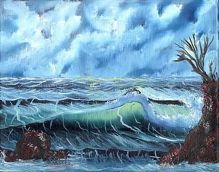 Turbulent Sea by Jim Saltis