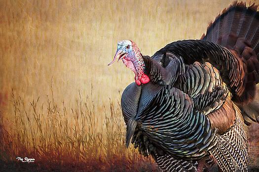 Turkey in the Straw by Peg Runyan