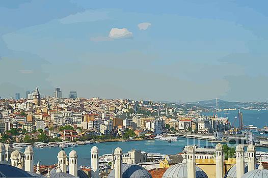 Turkey Tourist Boats by Clive Littin