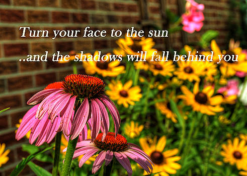 Turn Your Face To the Sun by Darin Williams