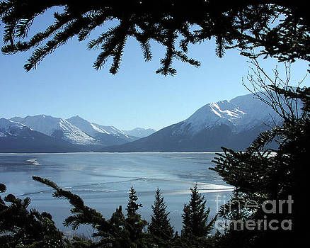 Turnagain Arm Kenai Range Alaska by Kimberly Blom-Roemer
