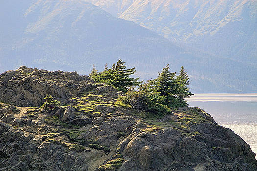 Turnagain Arm Study 1 by Robert Meyers-Lussier