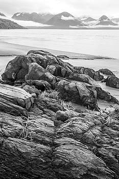 Turnagain Granite by Tim Newton