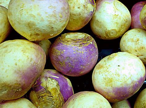 Robert Meyers-Lussier - Turnips