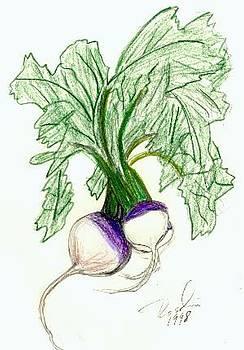 Turnips by Rosalin Moss