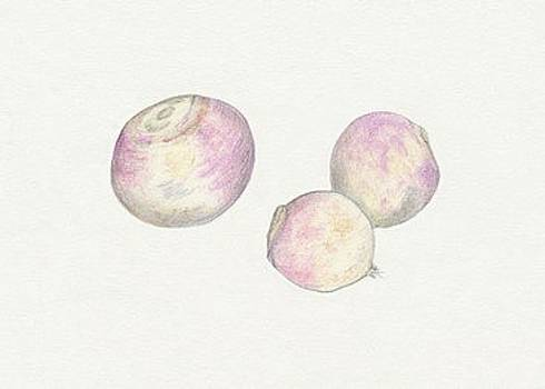 Turnips by Tara Poole