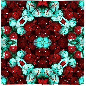 Turquoise and coral by Jesus Nicolas Castanon