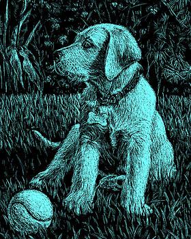 Turquoise Labrador Puppy Dog by Irina Sztukowski
