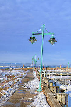 Turquoise Lampposts by Elizabeth Dow