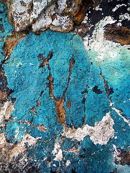 Turquoise Titillation  by John Smolinski