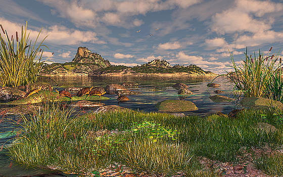 Turtle Cove by Mary Almond