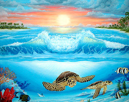 Turtle Haven by Randall Brewer