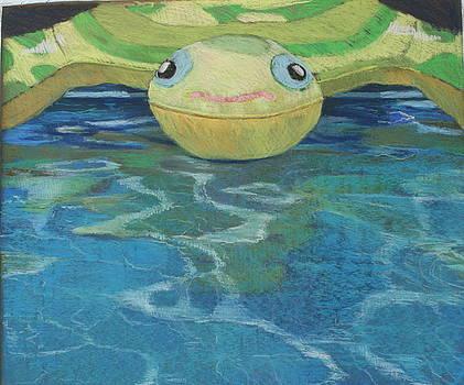 Turtle by Jan Frazier