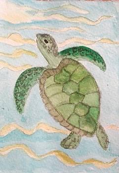 Turtle by Jesus Nicolas Castanon