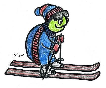 Turtle on Skis by Deborah Willard
