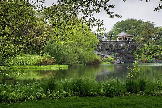 Turtle Pond by Cornelis Verwaal