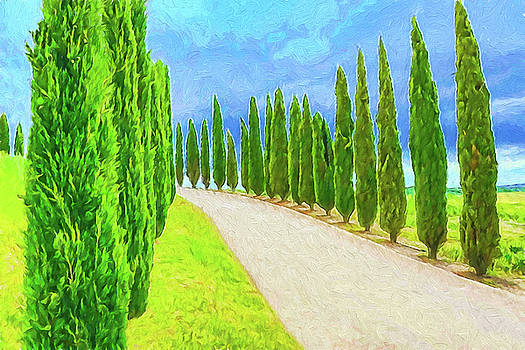Dennis Cox - Tuscan Cypress
