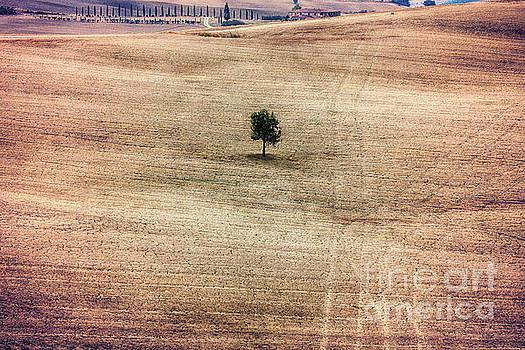 Tuscan Farmland by George Oze