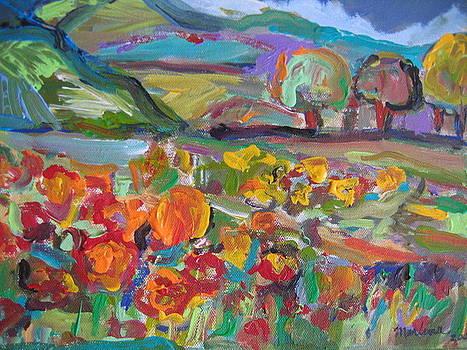 Tuscan Landscape by Marlene Robbins