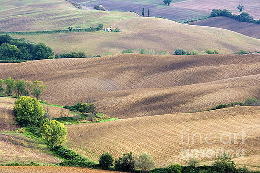 Tuscan landscape with plowed fields by Damian Davies