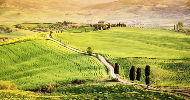 Francesco Riccardo Iacomino - Tuscan Path
