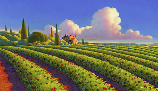 Tuscan Summer by Robin Moline