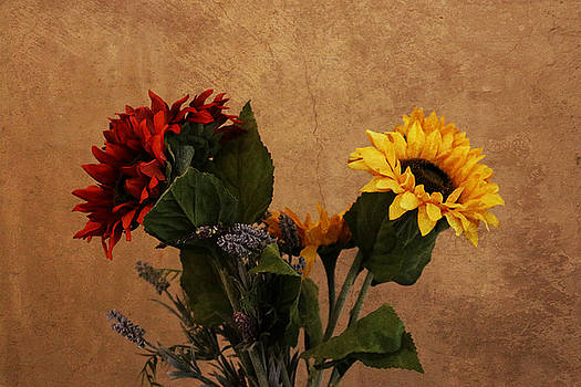 Tuscan Sunflowers by Stephanie Laird
