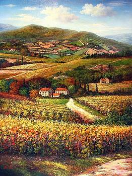 Tuscan Vineyard and Villas by Bacci