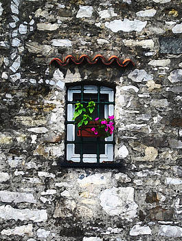 Tuscan Window Box by Paul Barlo