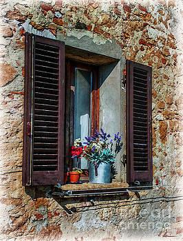 Tuscan Window by Hanny Heim