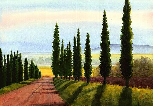 Tuscany Cypress Trees by Janet King