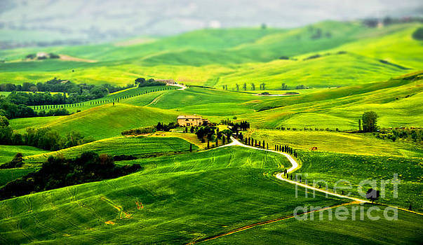 Tuscany s green scapes by Alessandro Giorgi Art Photography